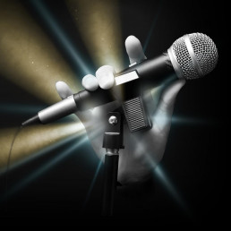 Microphone - Family of Entertainment - Bands in Denver