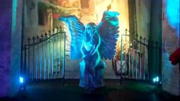 Themed Event - Secret Garden Cirque